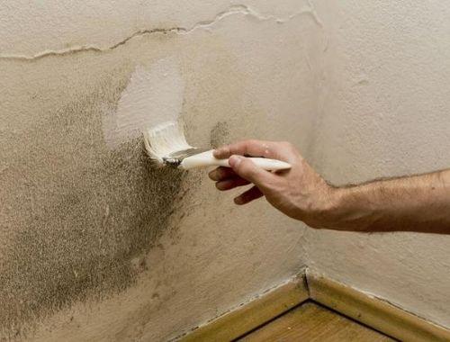 eliminar humedad en casa