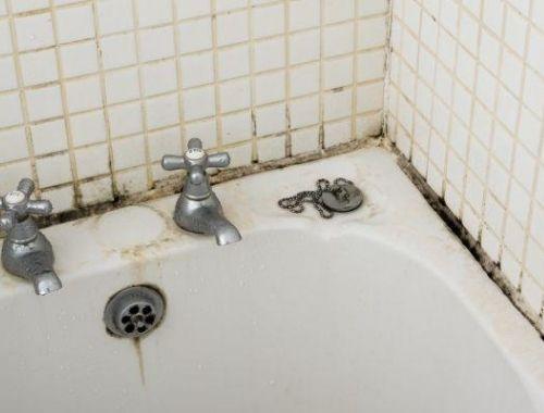 humedad en el baño eliminar