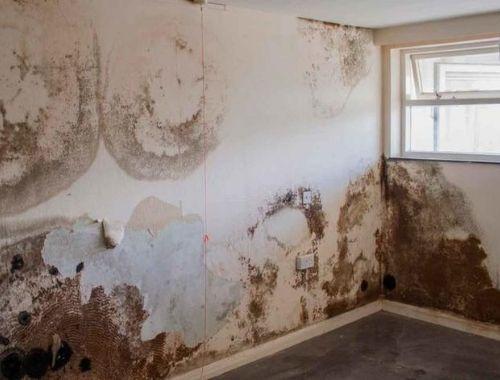 humedad en paredes por condensacion