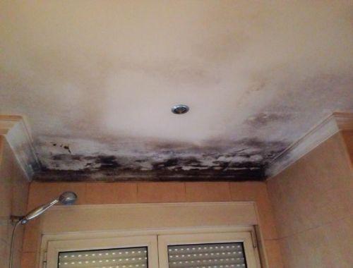 humedad techo baño