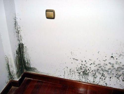 humedad ventanas por condensacion