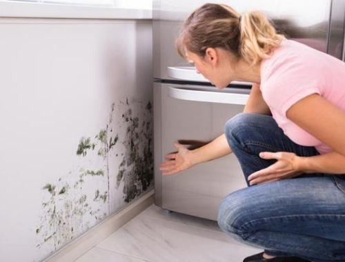 remedios caseros para la humedad en casa