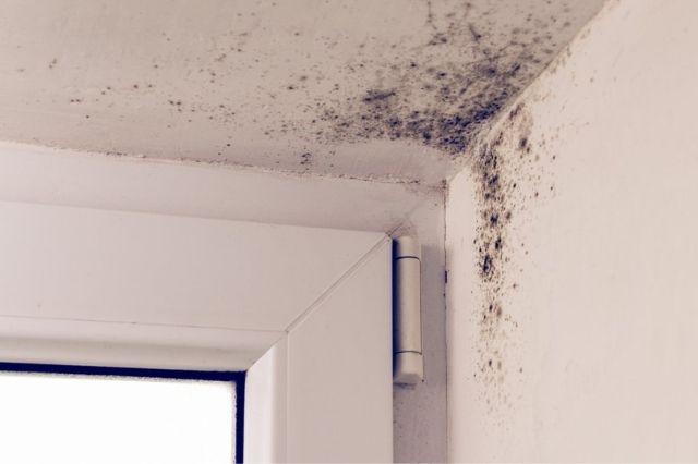 evitar las humedades por condensacion