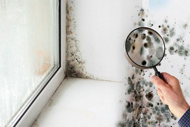 quién paga las humedades por condensación