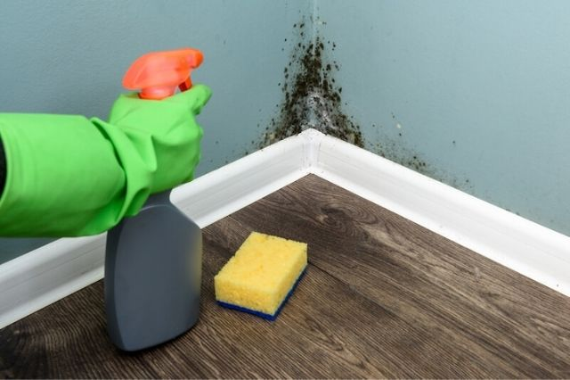 como quitar las humedades por condensación